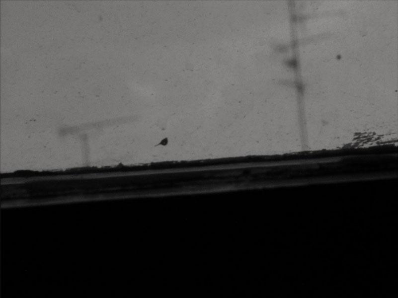 Anna Tsianou | Zwei Antennen I | © beim Fotografen
