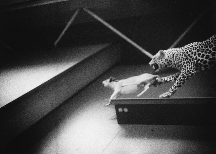Michael Birmanns | Ohne Titel | 2012 | Barytabzug | © beim Fotografen