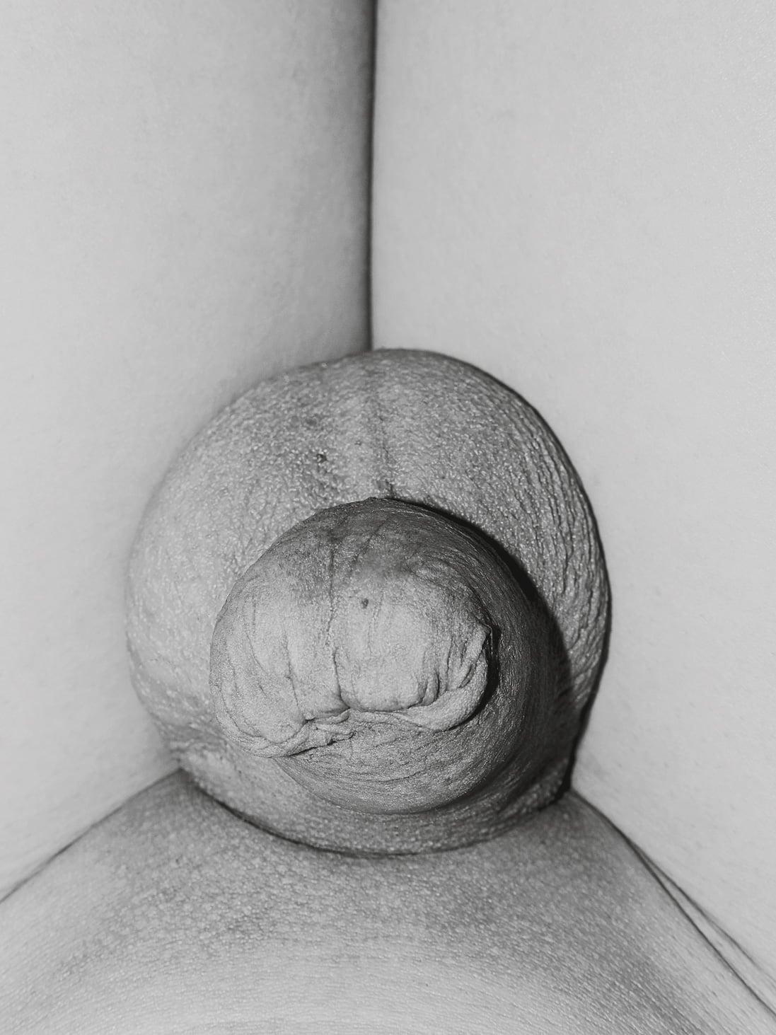 Hayahisa Tomiyasu | Genitalien, 2011 | 8 Bilder, 12 x 16 cm, Pigment Print 75