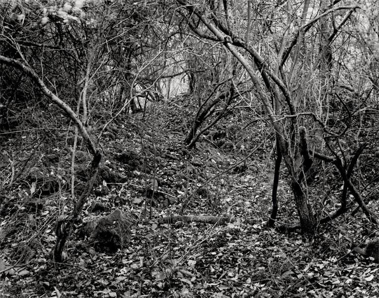 David Ertl | Steinbruch 7 | © beim Fotografen