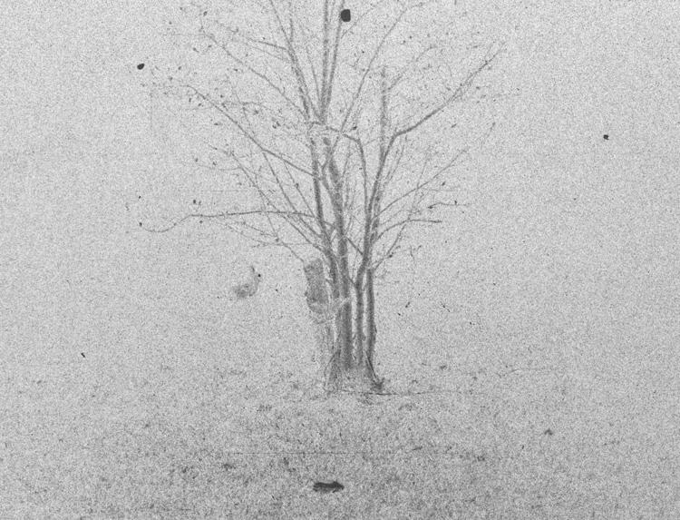 Matthias Schneck | Serie: Vom Rauschen der Materie | Ankunft der Löcher | 2013 | Analog SW /negativ | © beim Fotografen