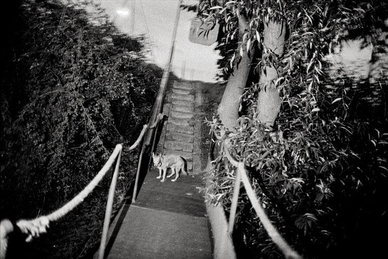 Hannes Jung | Ohne Titel 1 | © beim Fotografen