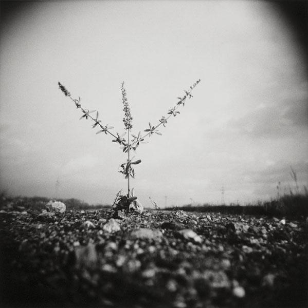 Dominik Asbach | Vergessene Welt I | © beim Fotografen