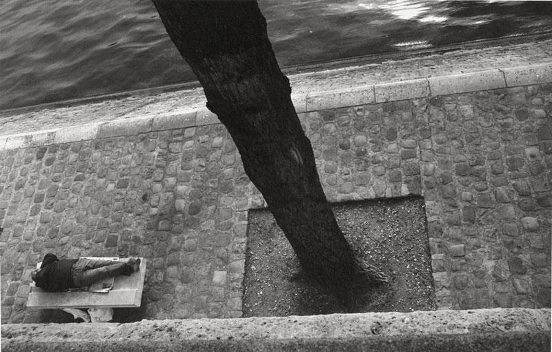 Philipp Kern | Der Baummannn | © beim Fotografen