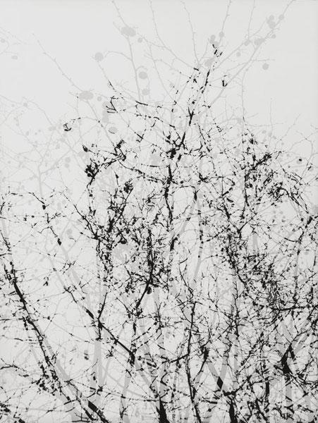 Michael Mann | Urban | © beim Fotografen