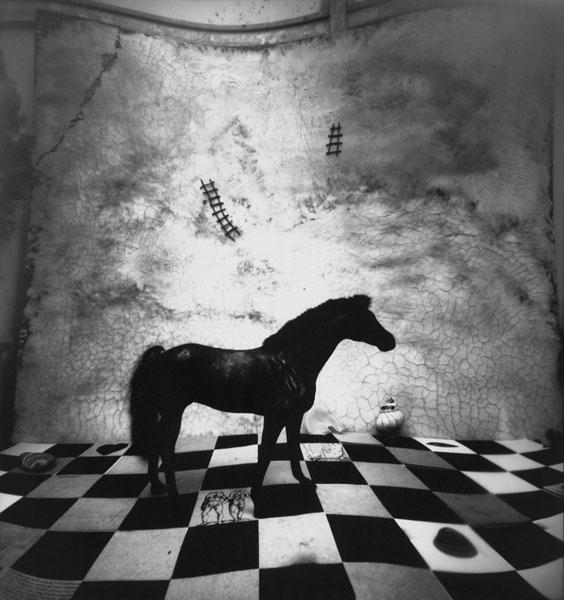 Edyta Wypierowska | XXX | © beim Fotografen